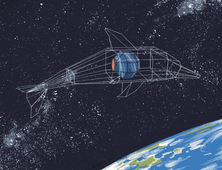 Clar_01_Spaceflight-Dolphin_wb2