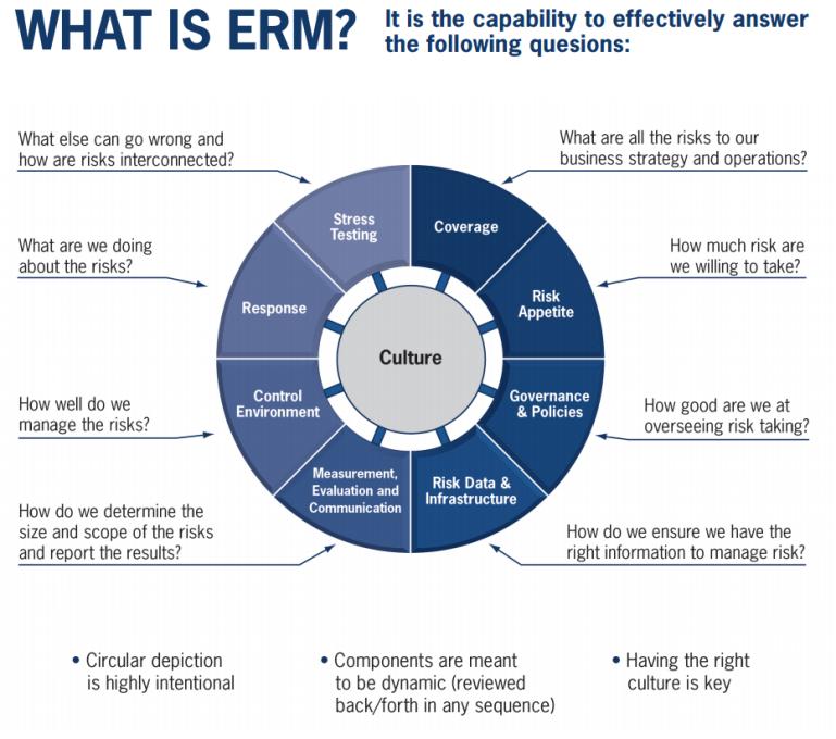 ERM Framework Wheel